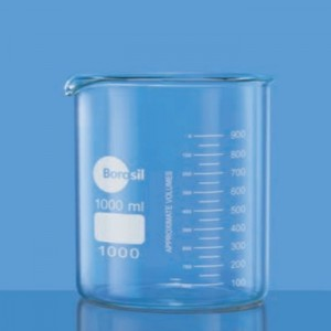 Glass Beaker Spout Low Form Laboratory